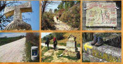 Detailansicht Poster mit Bildern vom Camino Frances.